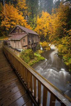 I picked a great day to visit the historic Cedar Creek Grist Mill in Southwest Washington State. The mill was built in 1875 and still operates as a volunteer-run attraction on weekends. I was hoping the fall color would be good up there, and I got lucky. In addition to the color, a very heavy rainstorm provided some texture. The stream of water in the upper left corner is coming from the roof of the covered bridge I was standing on when I shot this.