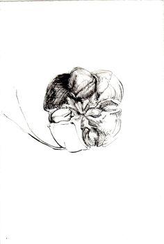 259 Seed Bank, Skull, Tattoos, Drawings, Tatuajes, Tattoo, Drawing, Tattoo Illustration, Portrait