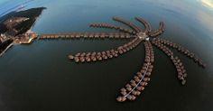 AVANI Sepang Goldcoast Resort No. 67, Jalan Pantai Bagan Lalang, Kg Bagan Lalang,, 43950 Sepang, Malaysia +60 3-3182 3600 https://www.facebook.com/AvaniSepangGoldcoastResort?fref=photo