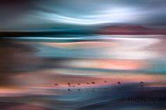 Migrations - Blue Sky  By: Ursula Abresch