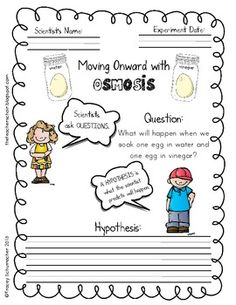 Osmosis: The Vinegar and Egg Experiment from The Teachers ...