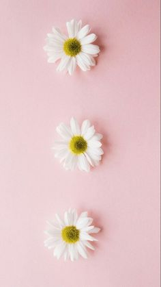 33 Trendy Wall Paper Fofos Iphone 7 Plus Look Wallpaper, Pastel Wallpaper, Tumblr Wallpaper, Flower Wallpaper, Screen Wallpaper, Mobile Wallpaper, Cute Backgrounds, Cute Wallpapers, Wallpaper Backgrounds