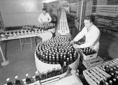 Coca-Cola, Bottling Factory, Melbourne, Victoria, Aug 1954
