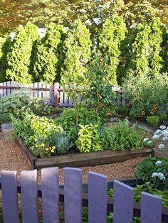 Grow a Cocktail Garden