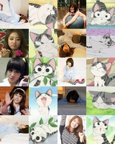 Pic Cute Park Jiyeon Compared with Cute Cat