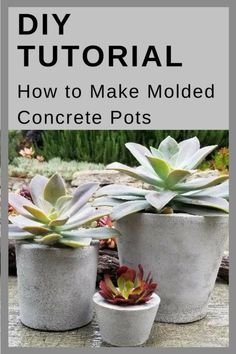 These concrete pots are very versatile and quite easy to make. They may be made in just about any size or shape and may be planted with succulents or other plants. Diy Cement Planters, Cement Flower Pots, Diy Concrete Planters, Concrete Crafts, Diy Concrete Mold, Cement Garden, Succulent Pots, Succulents Diy, Indoor Succulents