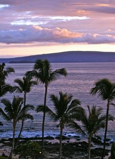 Maui - been there; would love to go back with the family