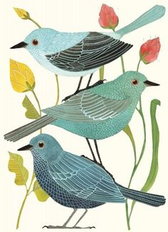genine's bird notecards. want!