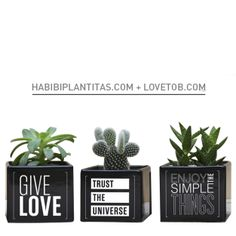 HABIBI + LOVE TO BE Love, Simple, Plants, Blanco Y Negro, Amor, Plant, Planting, Planets, Romances