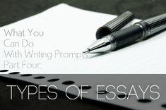 persuasive essay's