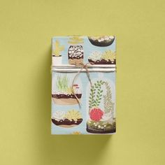 Wrap a whimsical package with succulents and cacti on our Terrariums Wrapping Paper! gift wrap, terrarium wrap, paper sourc, wrap paper, papers, wrapping