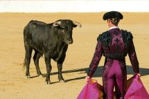 Bullfighting in Spain: Is it part of culture or barbaric murder?