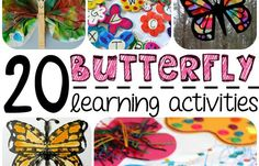 20 Butterfly Learning Activities