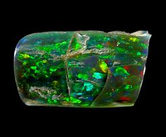 Section of fossilized tree limb that is now completely replaced by black opal. Opal is my birthstone.