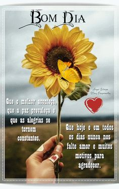 Mensagens  Poesias e Vídeos: Uma Linda Manhã de Inverno Good Morning Messages, Good Morning Greetings, Sunflower Pictures, Quotes, Blog, Namaste, Cards, Morning Messages, Cute Good Morning Messages