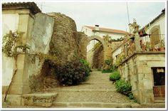 Castelo Vila Flor - Braganca