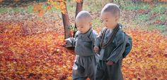 A monk asked Meditation Master Pai chang Who is the Buddha Pai chang answered Who are you Precious Children, Beautiful Children, Baby Kind, Baby Love, Cute Kids, Cute Babies, Cute Asian Babies, Chubby Babies, World Cultures