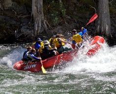 Enjoy a day of whitewater rafting on the famous St. Joe River in Idaho. St Joes, Whitewater Rafting, Rivers, Lakes, The Row, Boat, Plant Bed, River, Boats