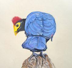 Original pastel painting on quarter imperial pastel paper. Multimedia Arts, Pastel Paper, Watercolours, Gouache, Birds, The Originals, Painting, Animals, Animales