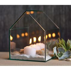 small *greenhouse terrarium* with candles ♥