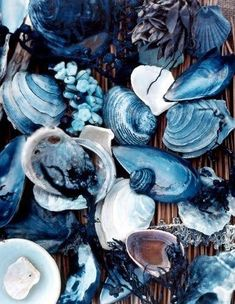 SHADES OF BLUE COLOR NAMES – I will provide various types of shades of blue color names that you can make an inspiration in the selection of colors. Lots of blue colors that we may not know, and I will tell you about the shades of blue color names for your inspiration.