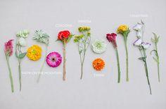 DIY: Farmer's Market Bouquet   Green Wedding Shoes Wedding Blog   Wedding Trends for Stylish + Creative Brides