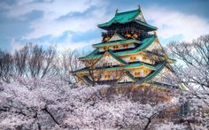 The Temple of the season of cherry blossoms in Osaka, Japan
