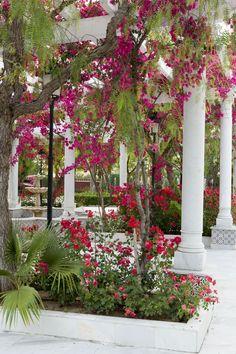 Jardines Salón Azahar #Haciendaazahares #Haciendas #Bodas #weddings #Sevilla #Andalucia #Spain