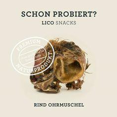 Rind Ohrmuschel