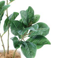 造花ドットコムの光触媒人工観葉植物(フェイクグリーン)32500「STYLE マグノリア 3本立+白プラ(CHIC8)90cm」(フェイクグリーン)