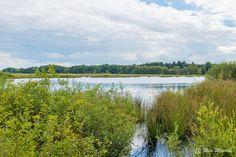 Dwingelderveld - Nature trail at Dwingelderveld