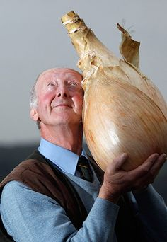 """Onion in hand: Peter Glazebrook poses with his world record breaking onion at The Harrogate Autumn Flower Show. He claimed a Guinness World Record with this effort which weighed 8.15kg."" I am in love with this photographer."