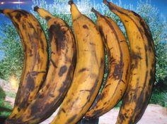 les bananes plantains murs - Recherche Google