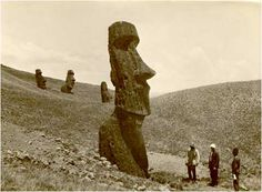 "The legends of the island, report that the statues ""moved by themselves"". Here you can understand the dimensions of the statues. The head has a body inside the ground wich doubles the dimension of the head."