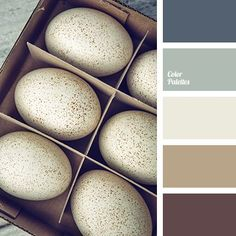 1000+ ideas about Gray And Brown on Pinterest   Alpaca Rug, Brown ...