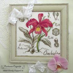 Цветочная серия. Орхидея. Оформление.