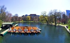10 Boston Attractions Every Visitor Must See: #2: Boston Public Garden and the Swan Boats
