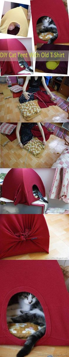 DIY Cat Tent with Your Old Tshirts 2