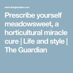 Prescribe yourself meadowsweet, a horticultural miracle cure | Life and style | The Guardian