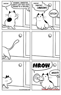 """25 Very Real Cat Comics For Your Caturday Pleasure - Funny memes that """"GET IT"""" and want you to too. Get the latest funniest memes and keep up what is going on in the meme-o-sphere. Pretty Cats, Cute Cats, Funny Cats, Funny Animals, Cute Animals, Crazy Cat Lady, Crazy Cats, How To Cat, Chesire Cat"""