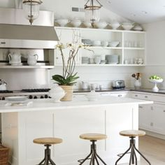 Kitchen: The only way those shelves works is that all the dishes match. Someday. . .