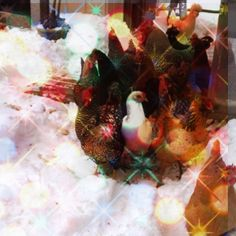 Holiday chickens photo by poet Pamela Lawrence - Photos 2.0 - Creative Thinkers International