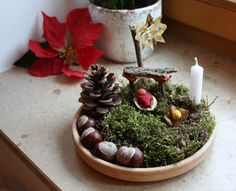 nature nativity perfect for nature table next year