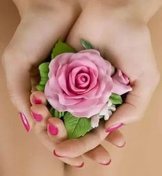 🌸Sweet Moments🌸🌸 — mariareginapittemonteiro: For you with love ♥♥♥ Beautiful Love Pictures, Most Beautiful Birds, Beautiful Rose Flowers, Flowers Nature, Flower Girl Photos, Girls With Flowers, Flower Pictures, Red Rose Flower, My Flower
