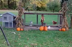 Chicken Coop from photo contest at The Chicken Chick on Facebook! Chicken Chick, Chicken Coops, Duck Coop, Backyard Chickens, Livestock, Autumn, Fall, Photo Contest, Ducks