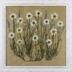 Pressed Flower Craft Ideas | Framed Pressed Flowers | Craft Ideas
