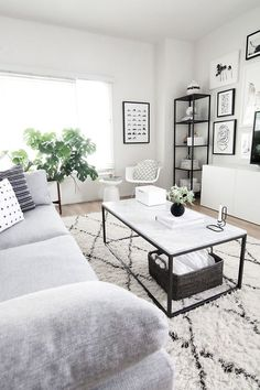 Monochrome living room neutral space black and white frames indoor plants grey couch sofa natural light west elm rug