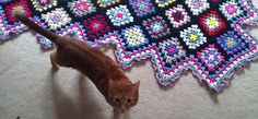 Ravelry: Project Gallery for Traditional Granny pattern by Jan Eaton