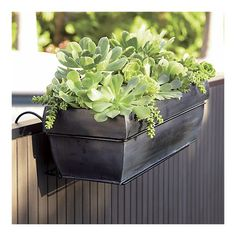 A rail planter that comes with a hook set...suitable for apartment gardens or unused rails on your deck!