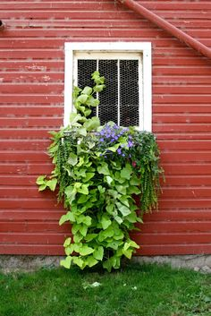 Red Barn window ~ I want my garage to look like a red barn